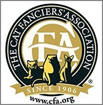 CFA new logo gold and black